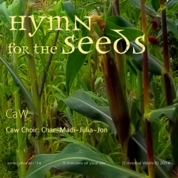 CAWells_hymn-for-the-seed-cover